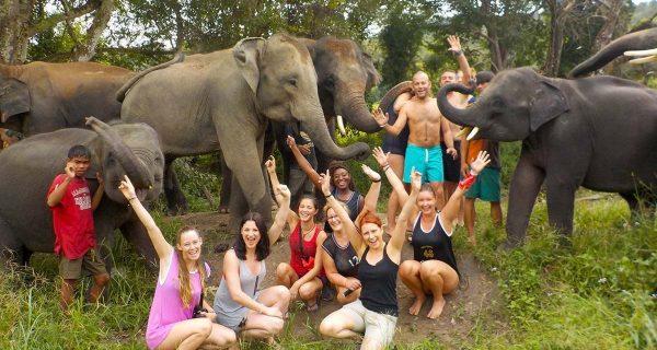 Elephant-Family-Sanctuary-Chiang-Mai-Thailand
